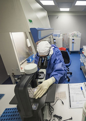 CAR T-cell therapy underway