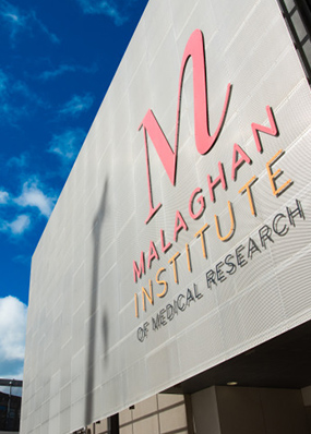 Malaghan Institute