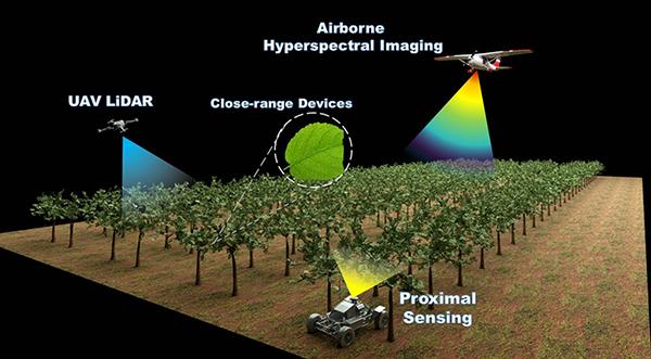 PlantTech Smart Idea